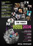 The Voice Summer Tour 2014